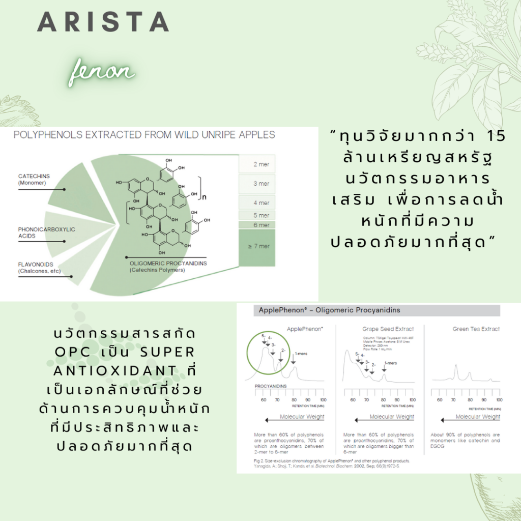 Arista fenon 11
